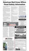 040219_YKBP_A8.pdf