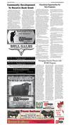 011017_YKMV_A8.pdf